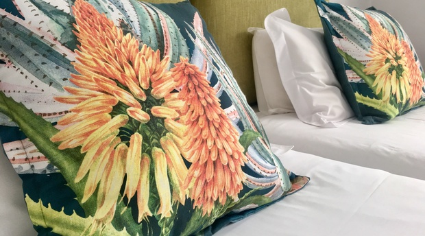 Comfortable floral cushions in guest house